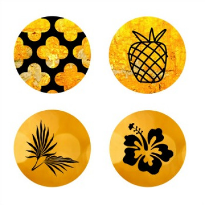 Gros badge- Collection Ananas