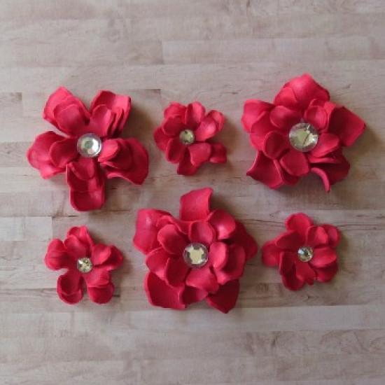 Fleurs-Annie-rouge
