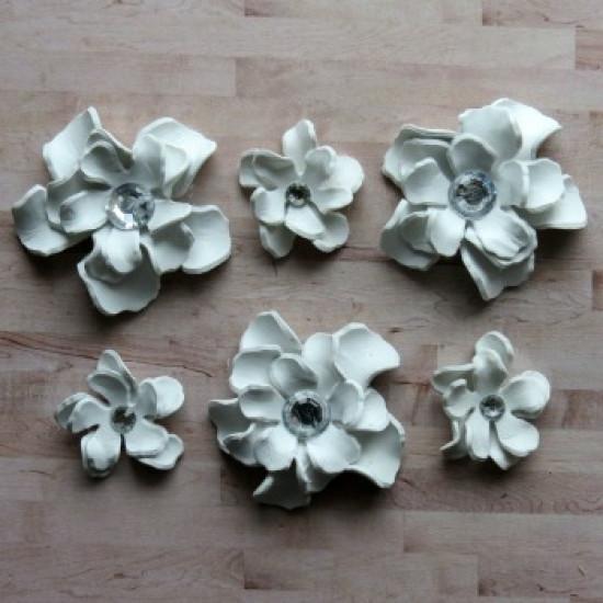 Fleurs-Annie-blanche
