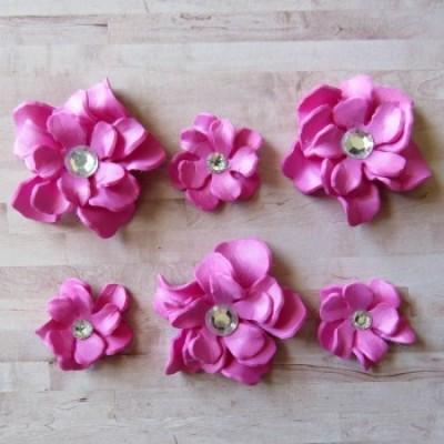 Fleurs-Annie-fushia