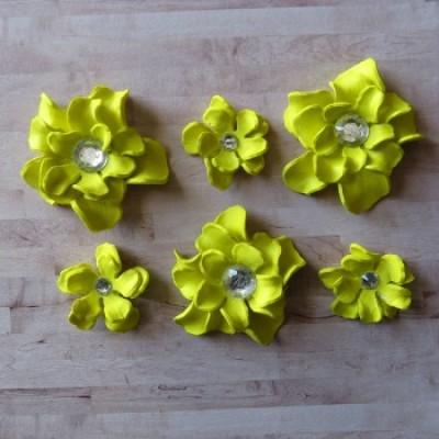 Fleurs-Annie-jaune
