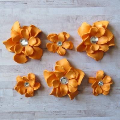 Fleurs-Annie-orange
