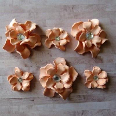 Fleurs-Annie-pêche